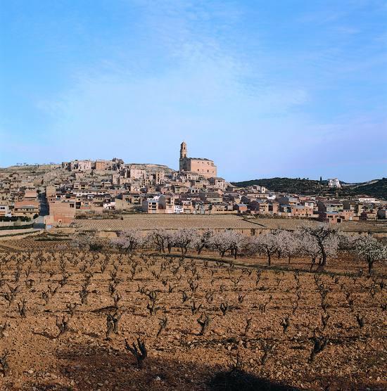 Vignes et village de Corbera - Terres de l'Ebre (Copyright : Toni Vidal - ACT)