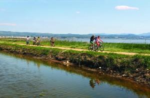 Excursion en vélo dans le Parc Naturel du Delta de l'Ebre - Ampolla - Terres de l'Ebre (Copyright : Tina Bagué - ACT)