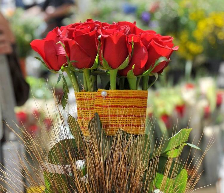 La Sant Jordi, fête des amoureux en Catalogne