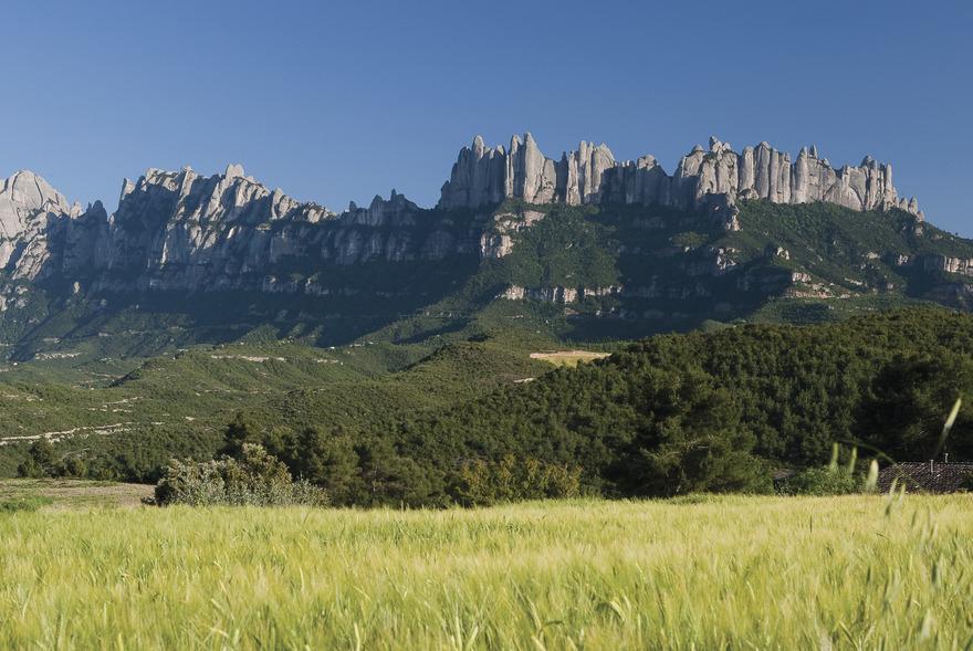 Parc Natural de la Muntanya de Montserrat. - Photo Juan Jose Pascual