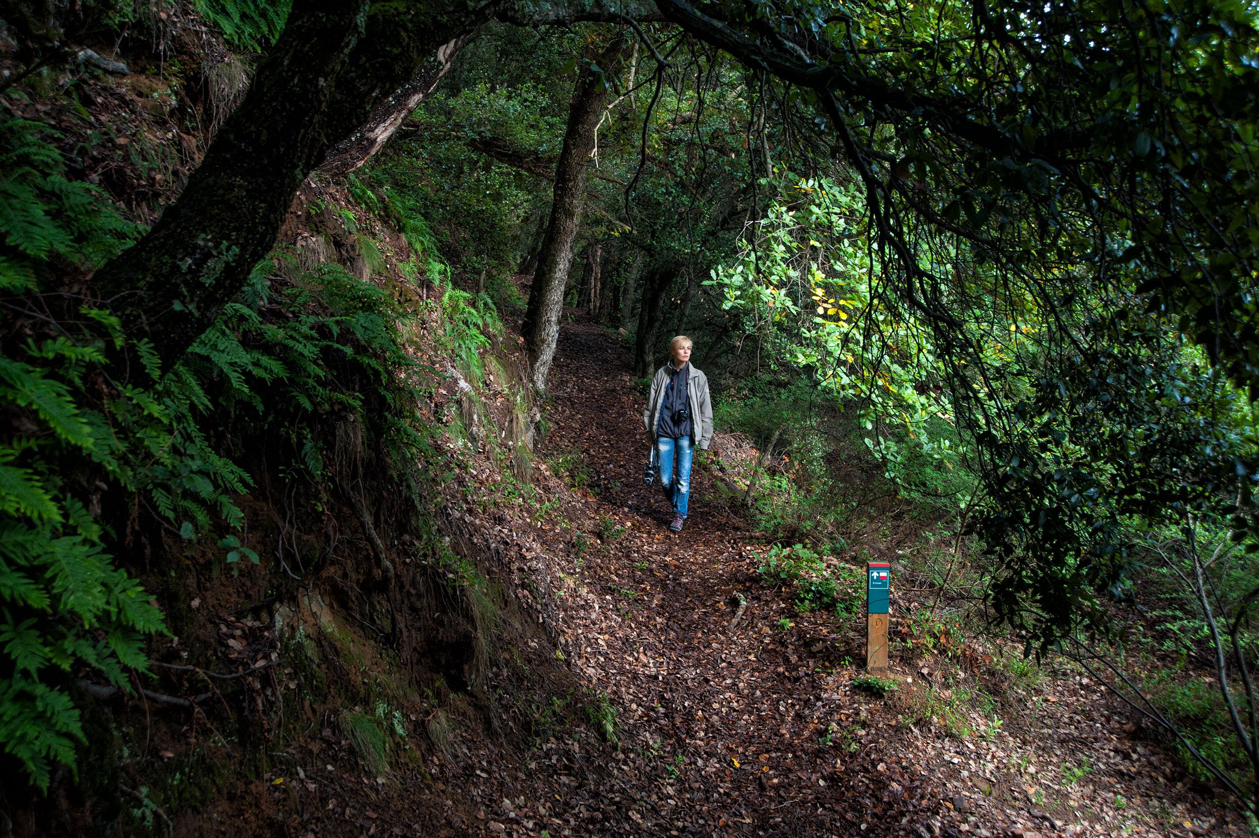 Randonnée dans le Parc Naturel de Montseny