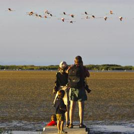 10 lieux incontournables pour observer les oiseaux en Catalogne
