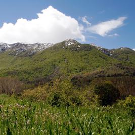 Montseny et les Terres de l'Ebre, réserves de la biosphère en Catalogne