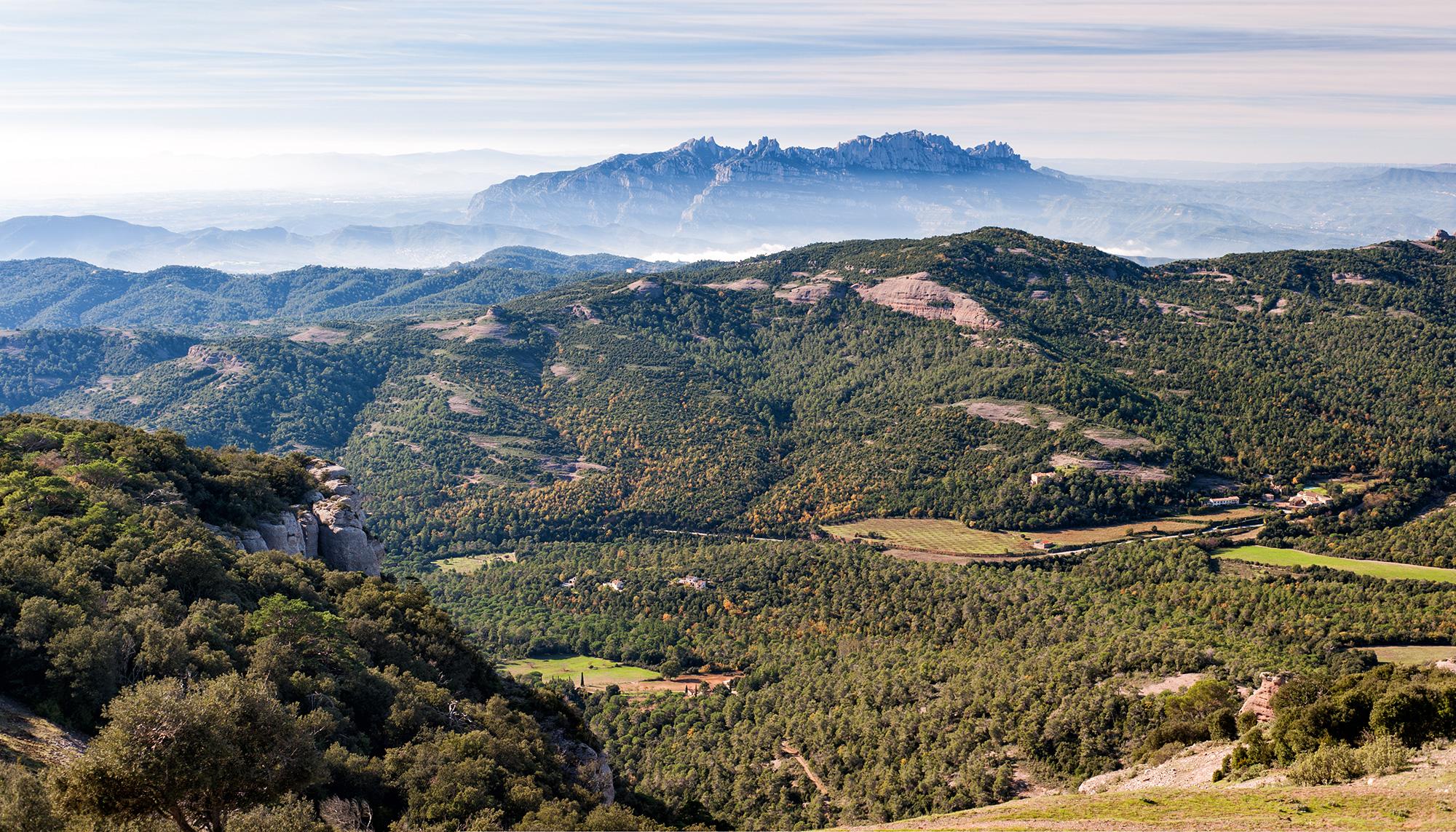 Parc Natural de Sant Llorenç del Munt