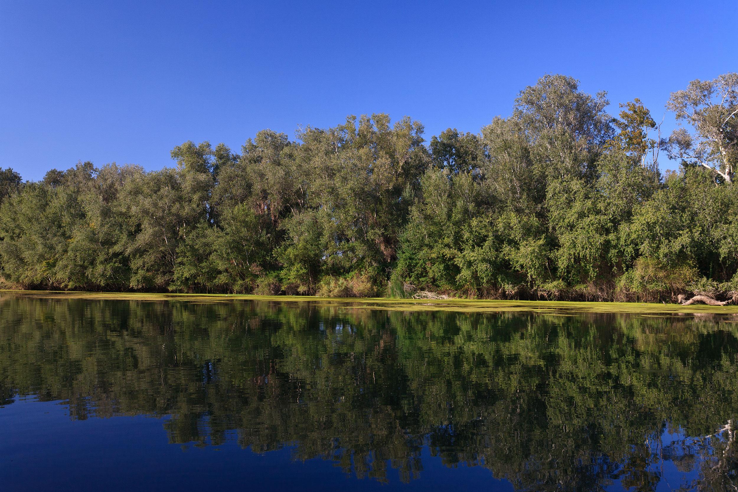 Rivière de l'Ebre -©Patronat de Turisme de la Diputació de Tarragona-Terres de l'Ebre
