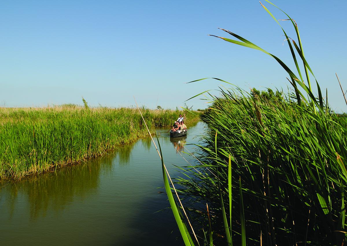 Estany Encanyissada, Parc Naturel du Delta de l'Ebre