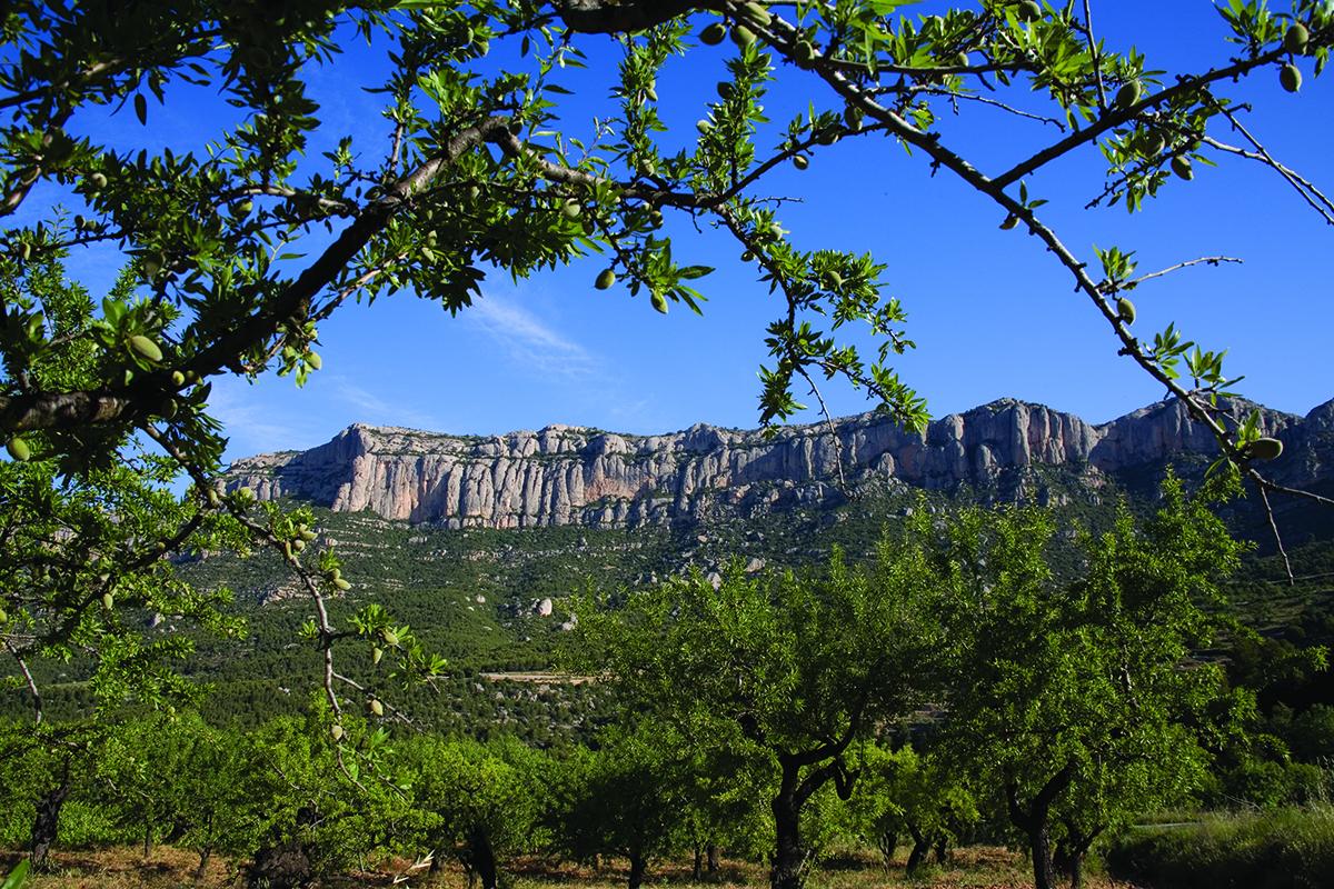 Parc Naturel de la Serra del Montsant
