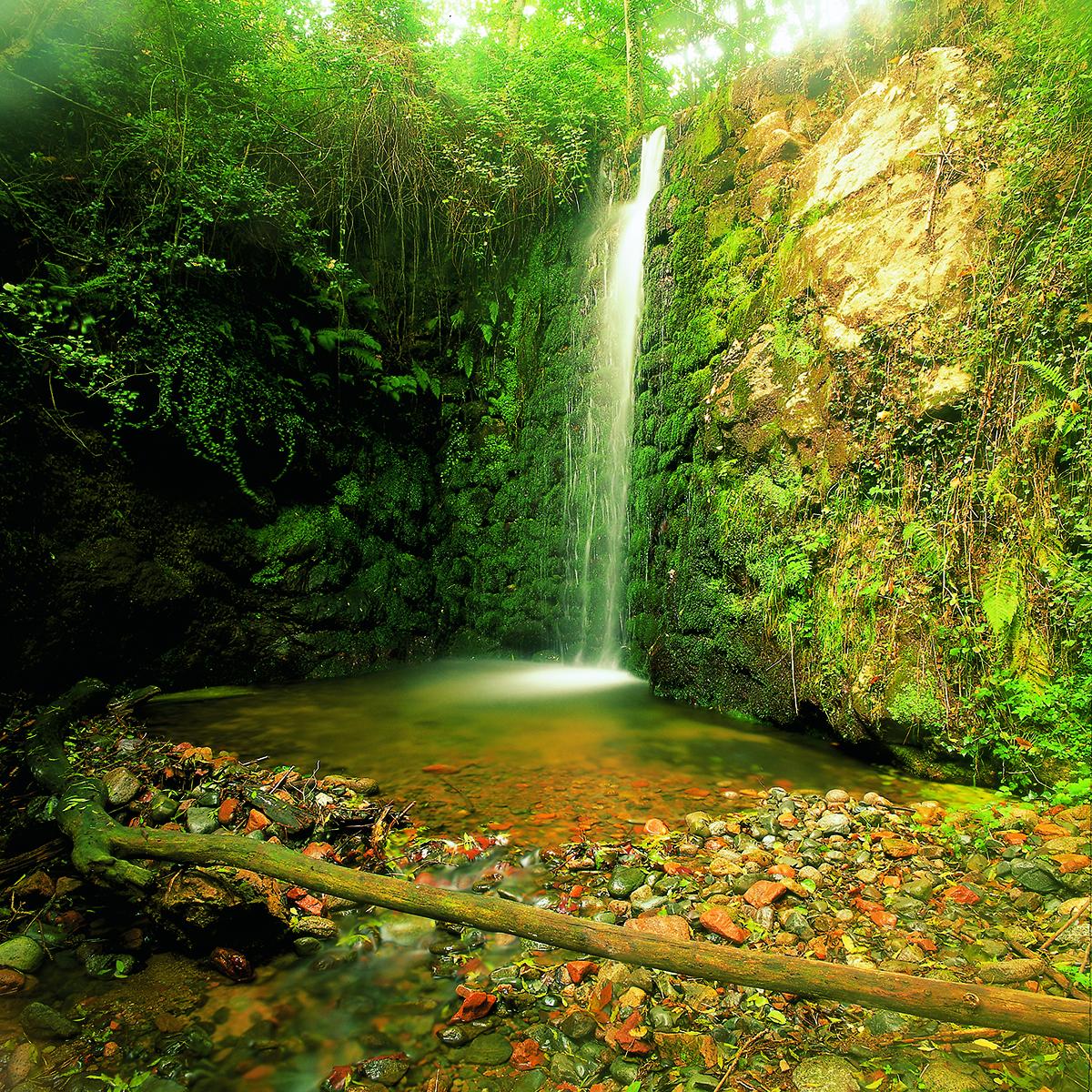Parc Naturel del Montseny
