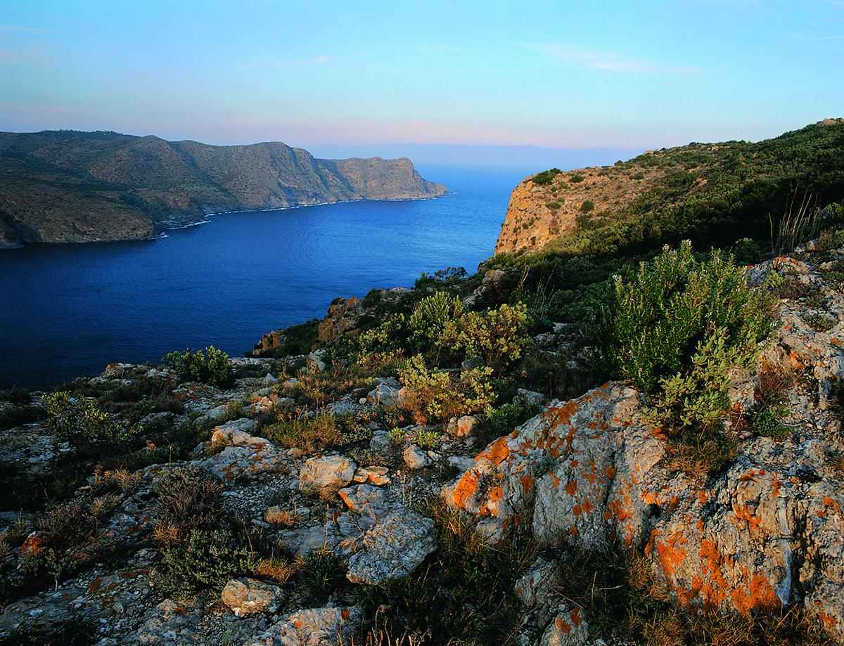 Punta de sa Figuera, Parc Naturel du Cap de Creus