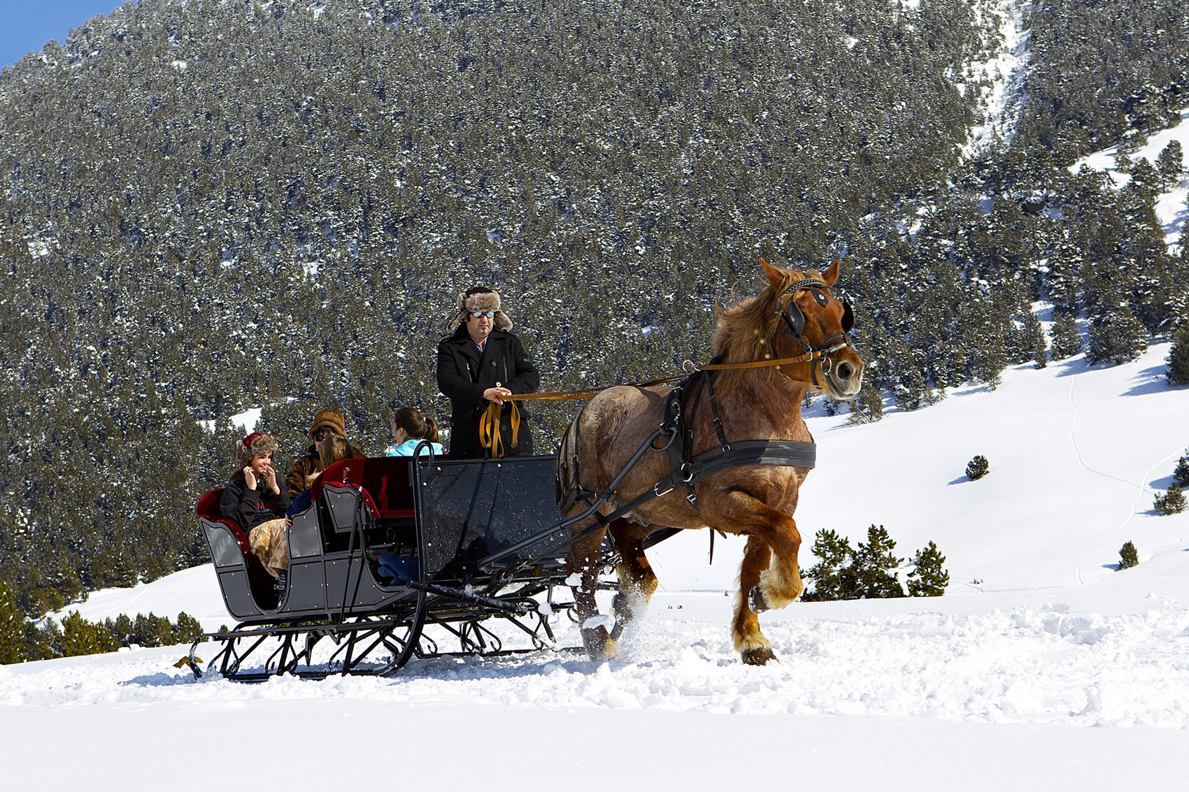 Traîneau cheval Baqueira © Javi Montes