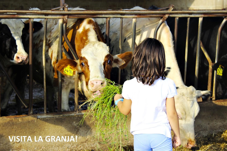 Benvinguts a Pagès © Mas Bes, La Selva