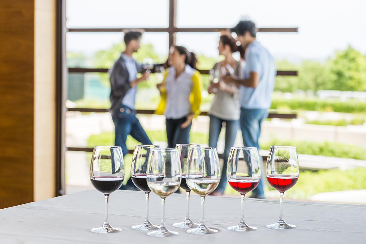 Dégustation de vins des Caves Torres