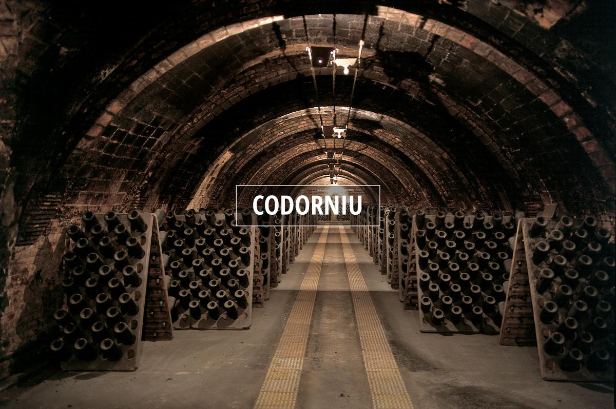 Caves de Codorniu © IMAS