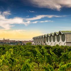 Vignes, Cave & Hotel Mastinell et la ville au fond © Servei Promoció Turística - Vilafranca del Penedès