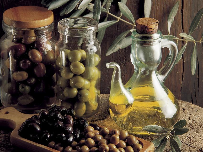 4 adresses pour explorer les richesses de l'huile d'olive catalane