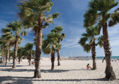 Savourer entre amis tous les plaisirs du littoral catalan