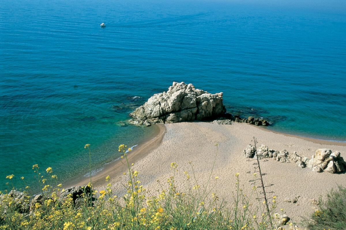 Platja-de-les-Roques---Turismo-Verde-S.L.