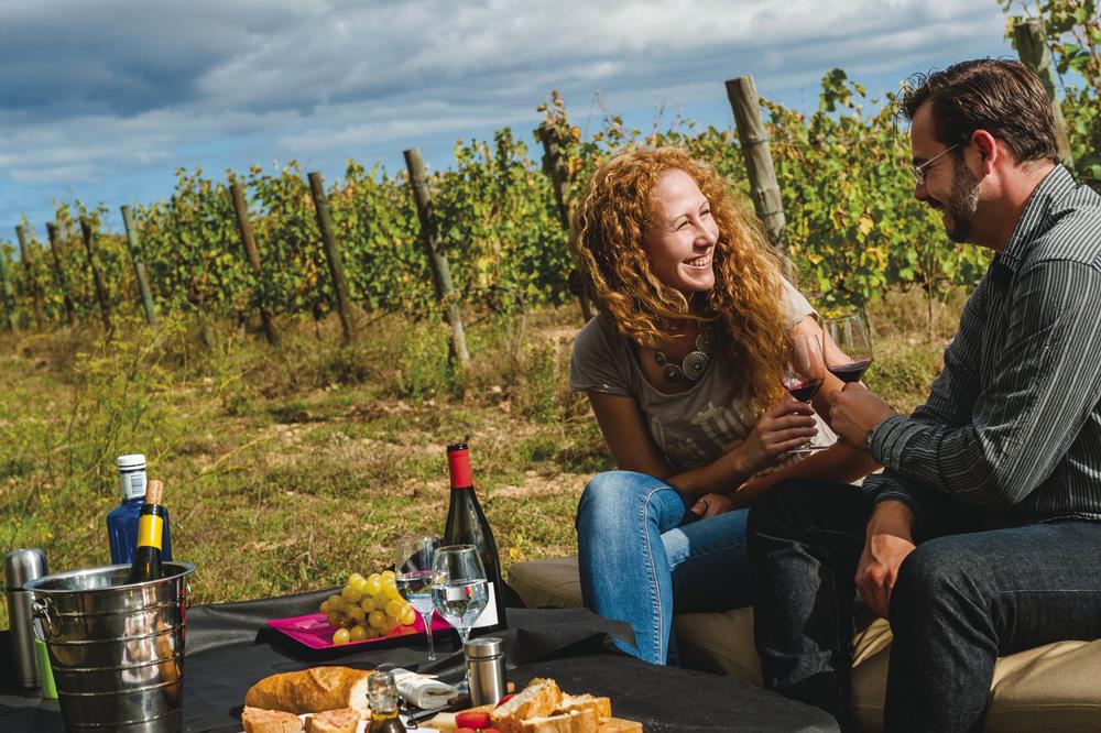 Sur la route des vins de l'Empordà
