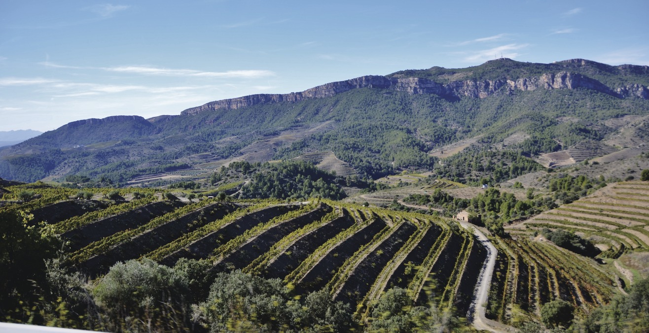 Route des vins de Priorat