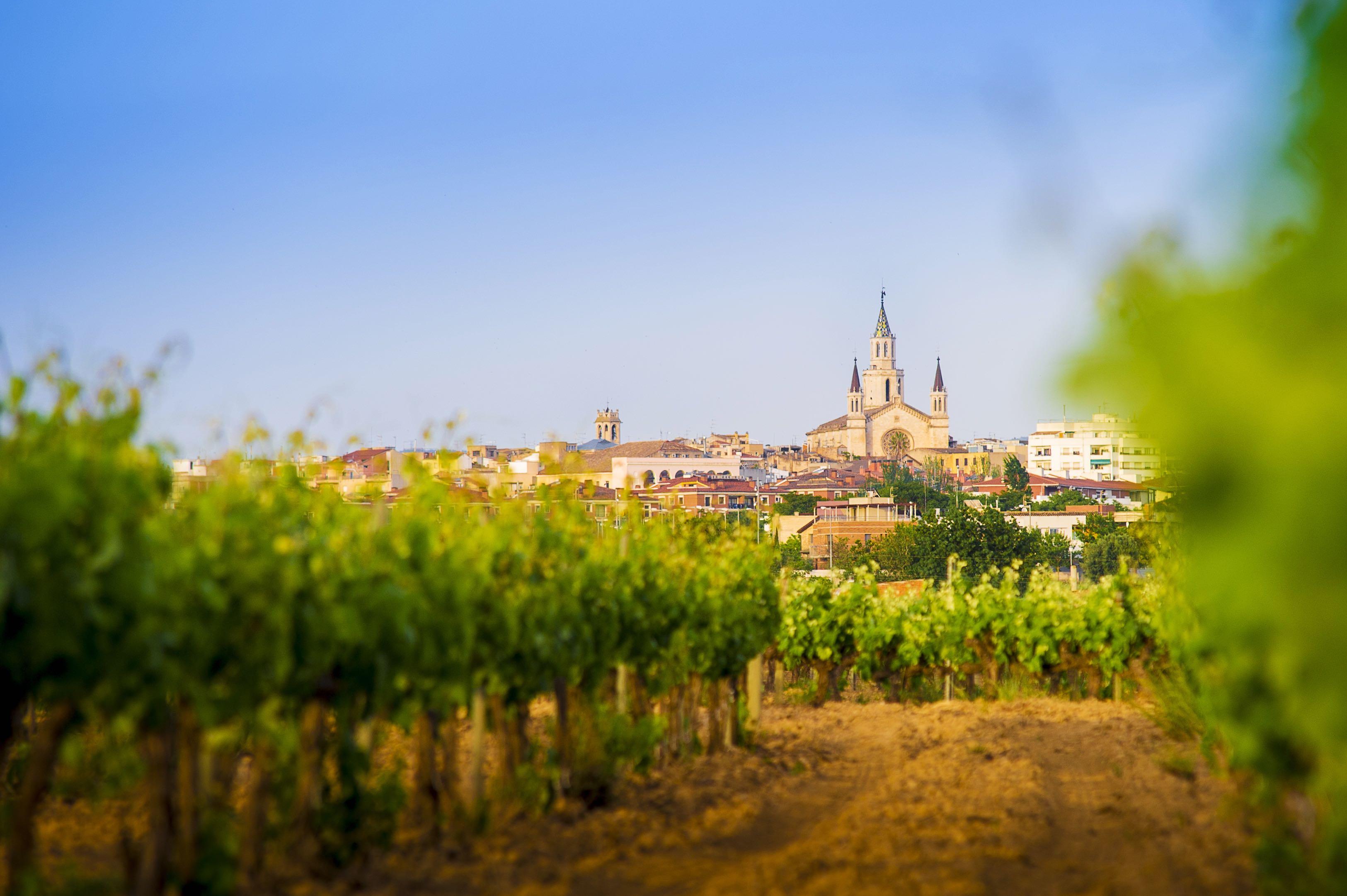 © Servei Promoció Turística Ajuntament De Vilafranca Del Penedès