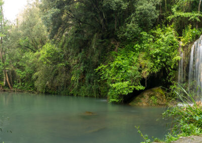 Le Bassin du Molí dels Murris : un oasis en Garrotxa