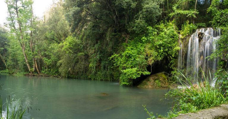 Bassin du Molí dels Murris (Garrotxa)